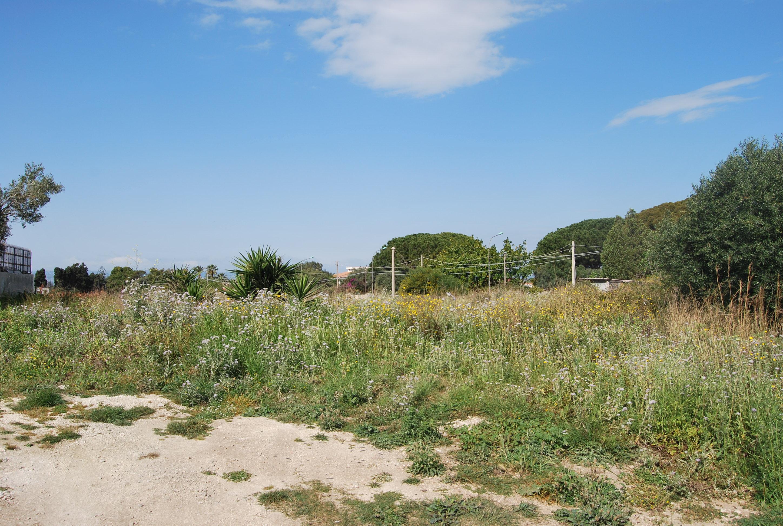 Terreno in zona Isola, Siracusa